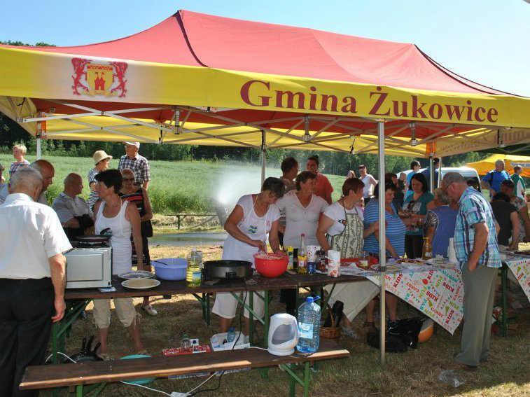 zdjęcie 2014-06-10-piknik-rodzinny@Góra-św.-Anny-001